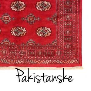 pakistansk1